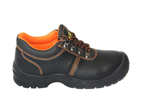 Labour Safety Shoes   ABP1-2003